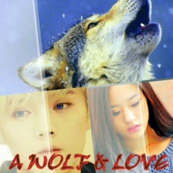 A Wolf & Love