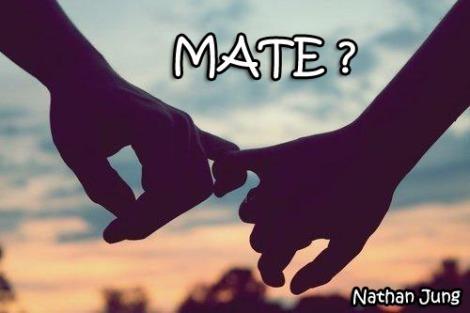 FREELANCE-Mate#1-Nathan Jung_poster